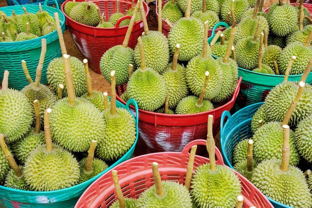 Durian au marché