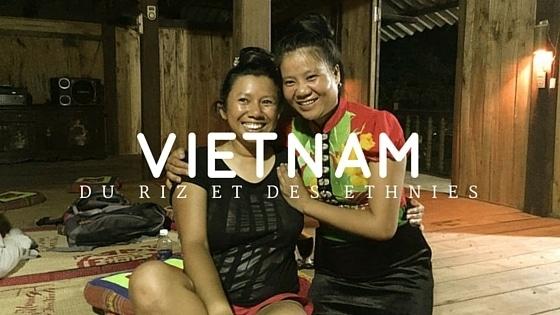 Du Riz aux ethnies Vietnam