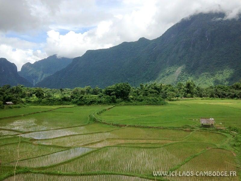 Rizières environs Vang Vieng