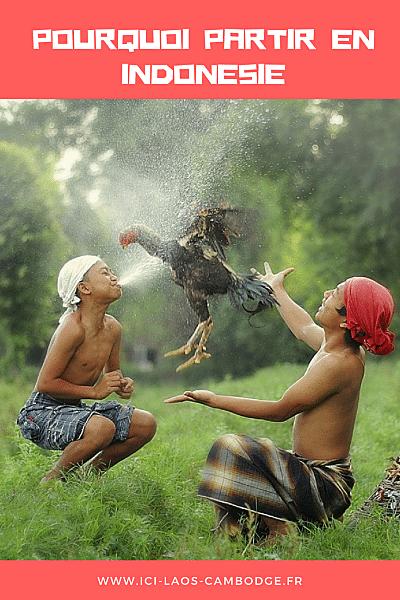 Pourquoi partir en Indonésie