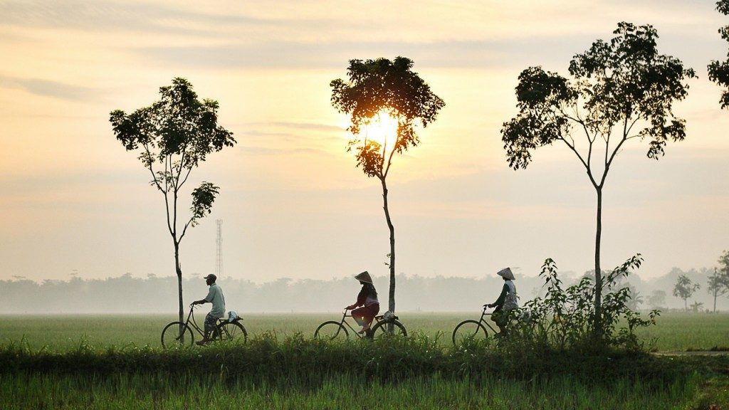 Promenade vélo en Asie