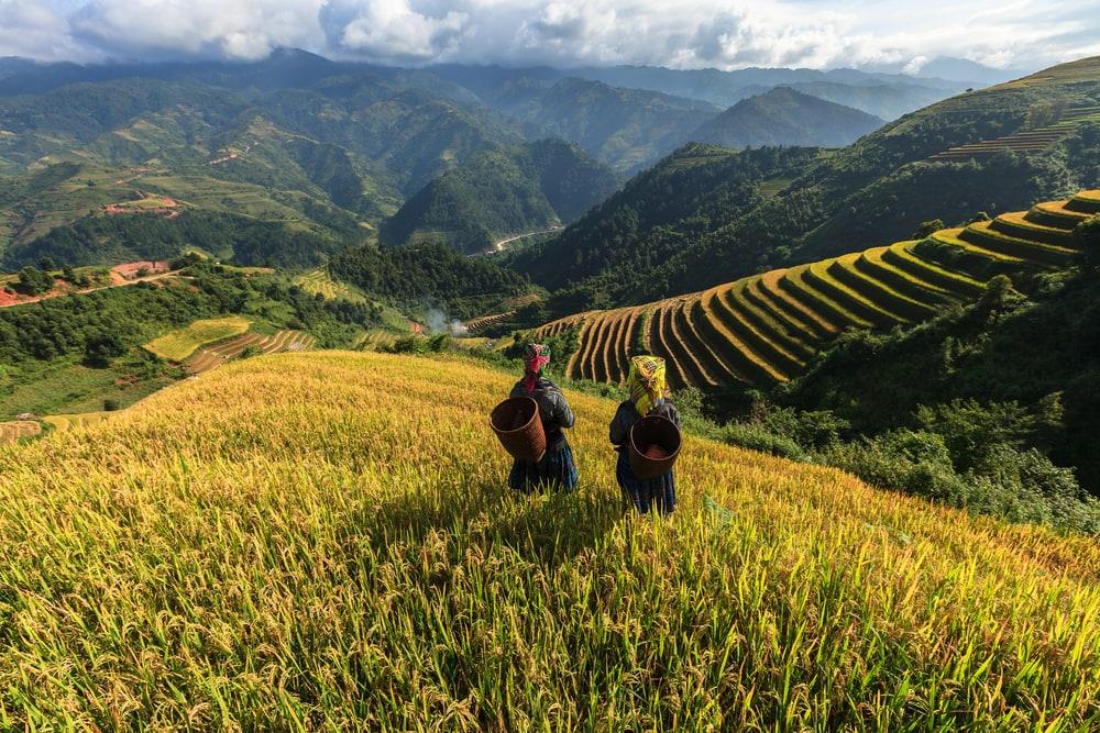 Mes 7 bonnes raisons d'aller visiter le Vietnam sans regret