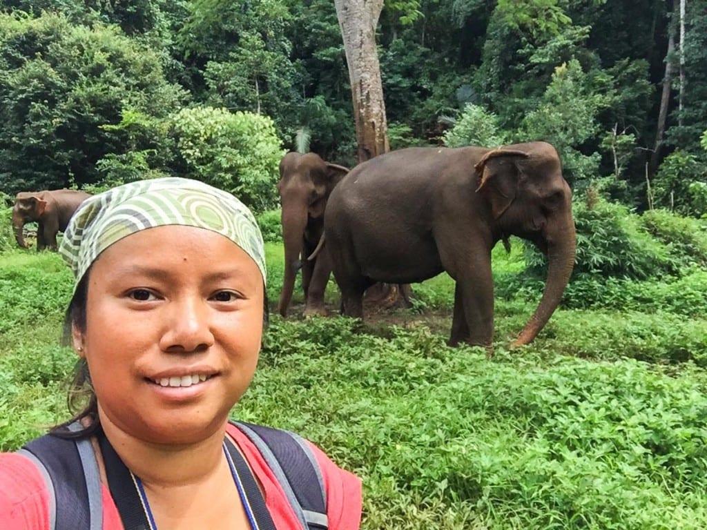 Moi et un éléphant @ EVP