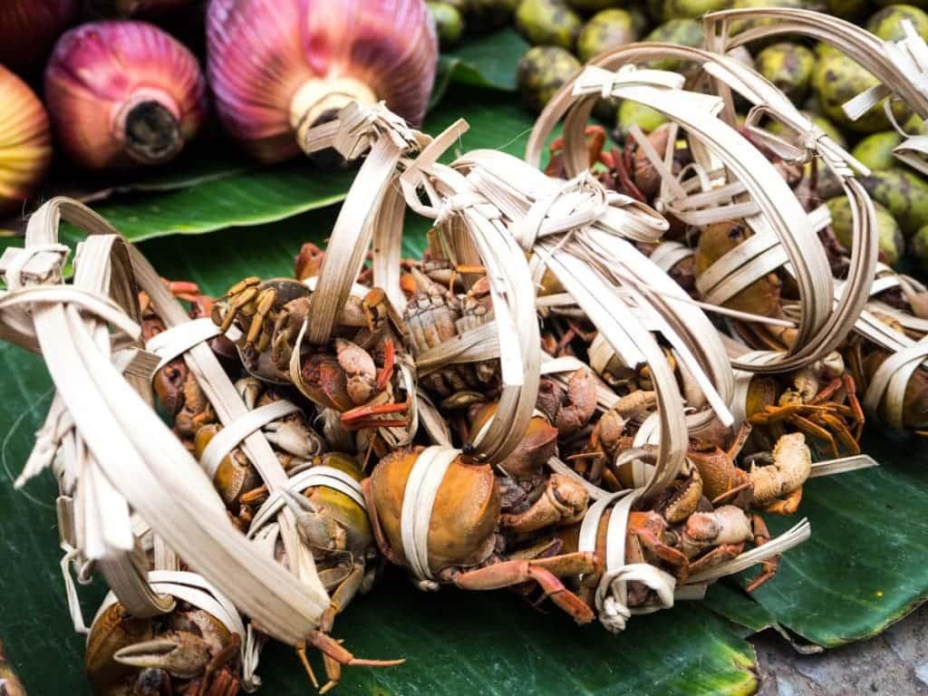 Crabes au marché alimentaire de Luang Prabang