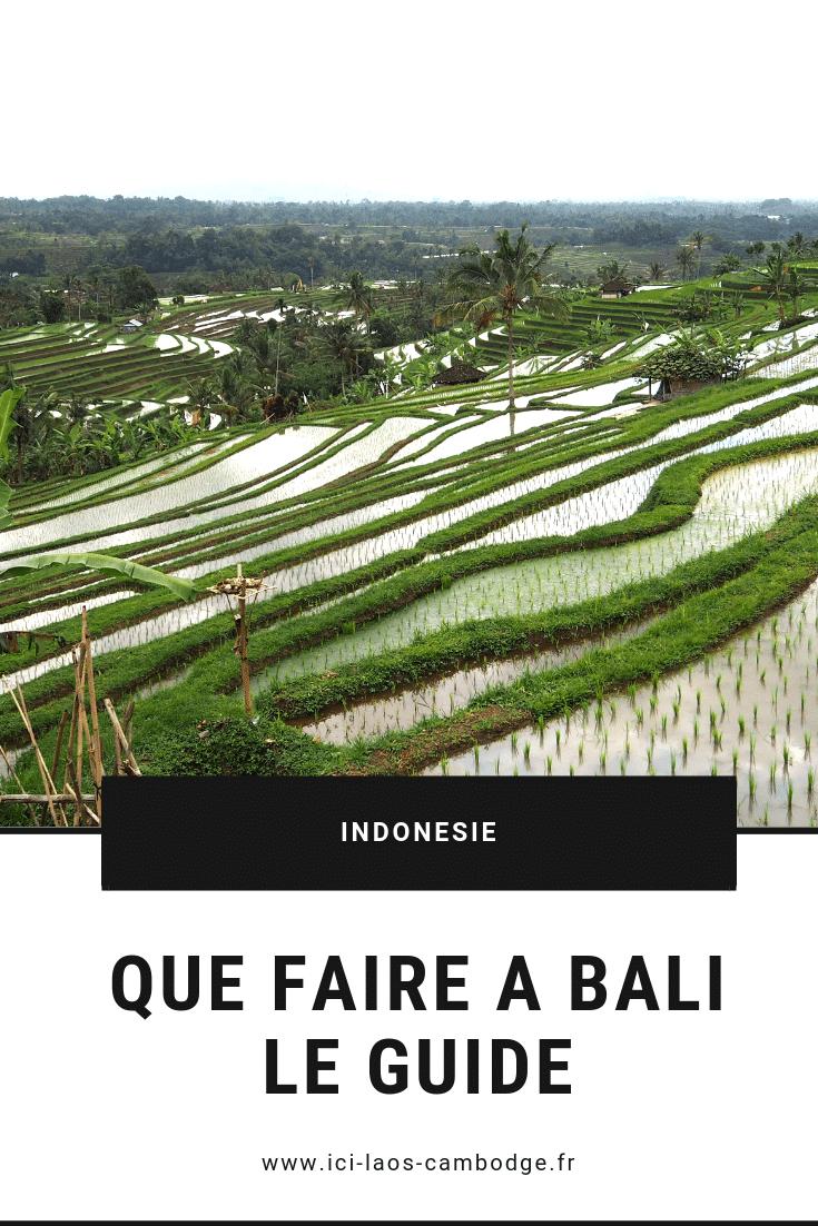 Pin Que faire à Bali