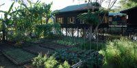 Jardin au Inle Heritage Stilt Houses
