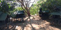 Jardin pour chats birmans au Inle Heritage Stilt Houses