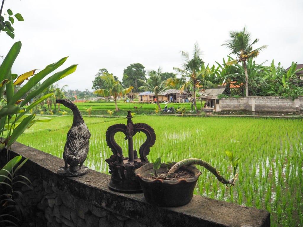 Où dormir à Ubud ? Au Balimoon guesthouse