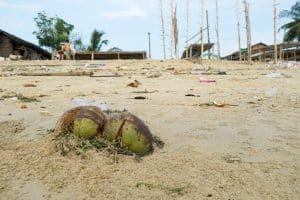 Déchets plage proche de Ye