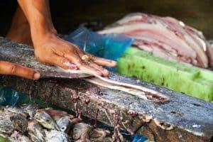 Découpe de poissons Poissons séchés Bateaux Village San Hlan - Dawei