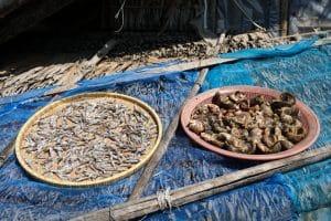Poissons séchés Bateaux Village San Hlan - Dawei