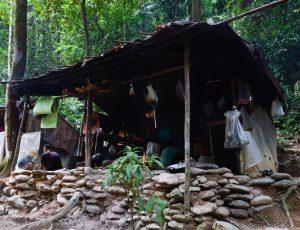 Cuisine du campement du trek à Bukit Lawang