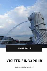 Pin Visiter Singapour